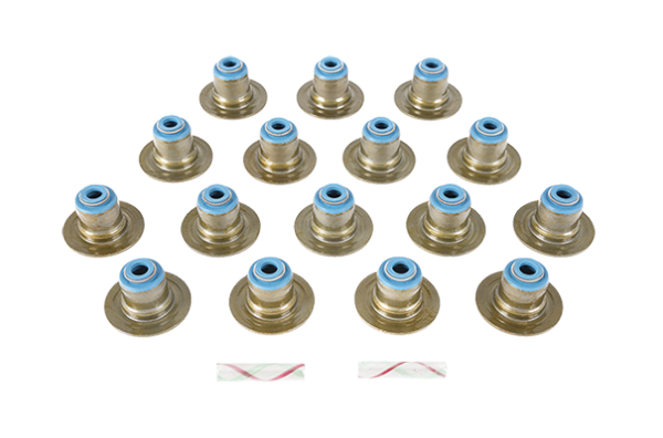 Engine_Repair_Valve_Stem_Seals_Tout